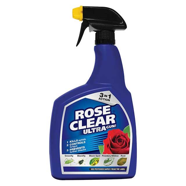 roseclear-offer
